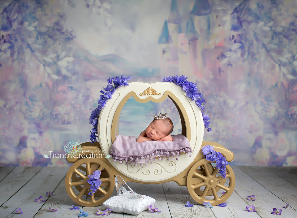 Newborn Photographer Los Angeles